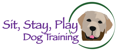 Sit, Stay, Play Dog Training